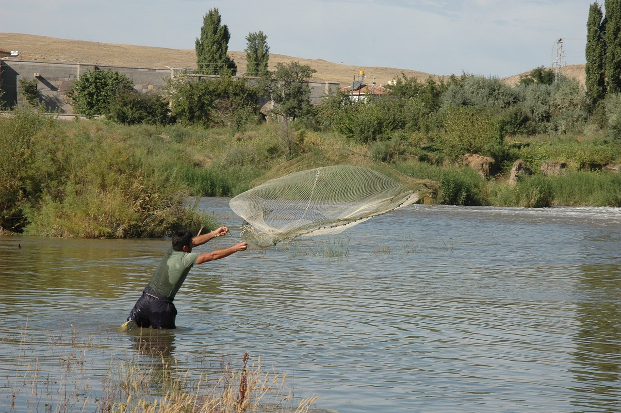 Agent Insights - You Can Always Catch More Fish With a Net Than With a Hook