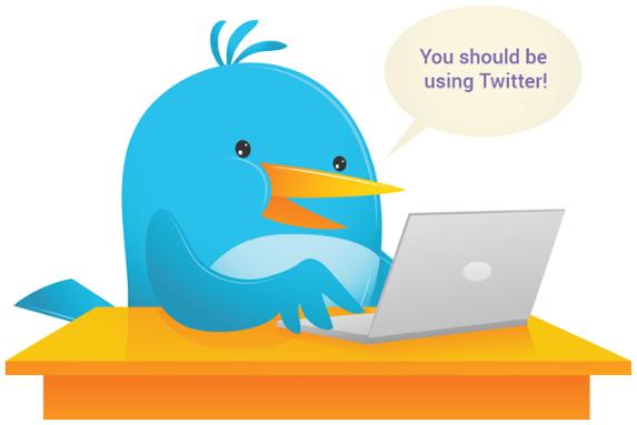 Bird-on-Laptop---Twitter-1.png