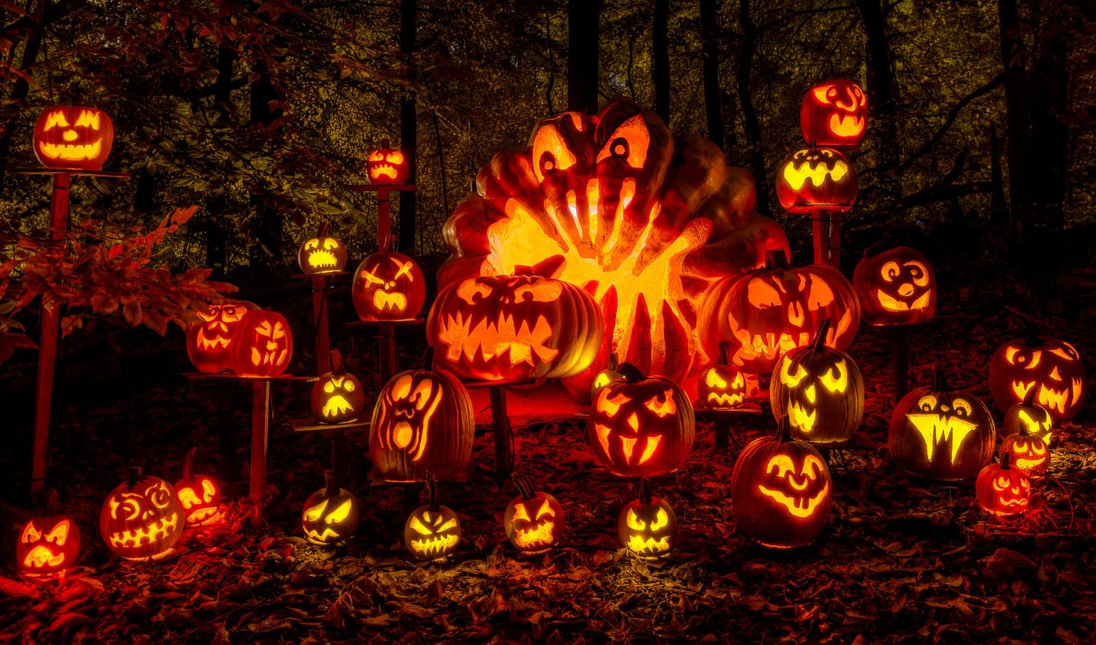Halloween: Jack O'Lanterns Galore